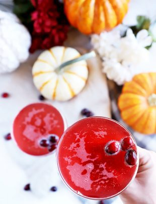 Hand holding cocktail with cranberries image