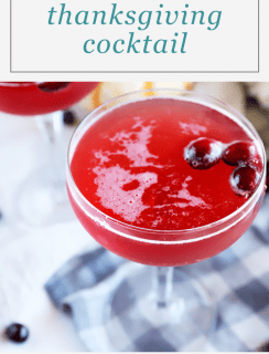 Sparkling Thanksgiving Cocktail Pinterest Picture