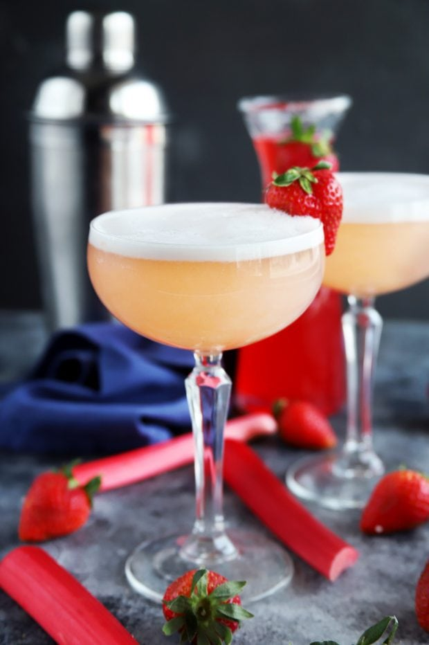 gin fizz cocktails with shaker
