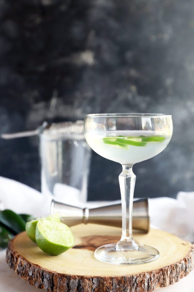 Side photo of gimlet in coupe glass