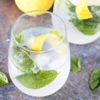 Lemon Basil Gin & Tonic