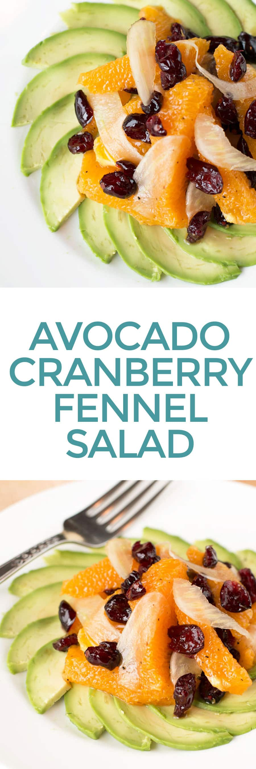 Avocado Fennel Salad | cakenknife.com