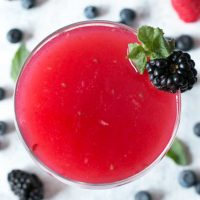 Absolut Elyx Wild Berry Vesper