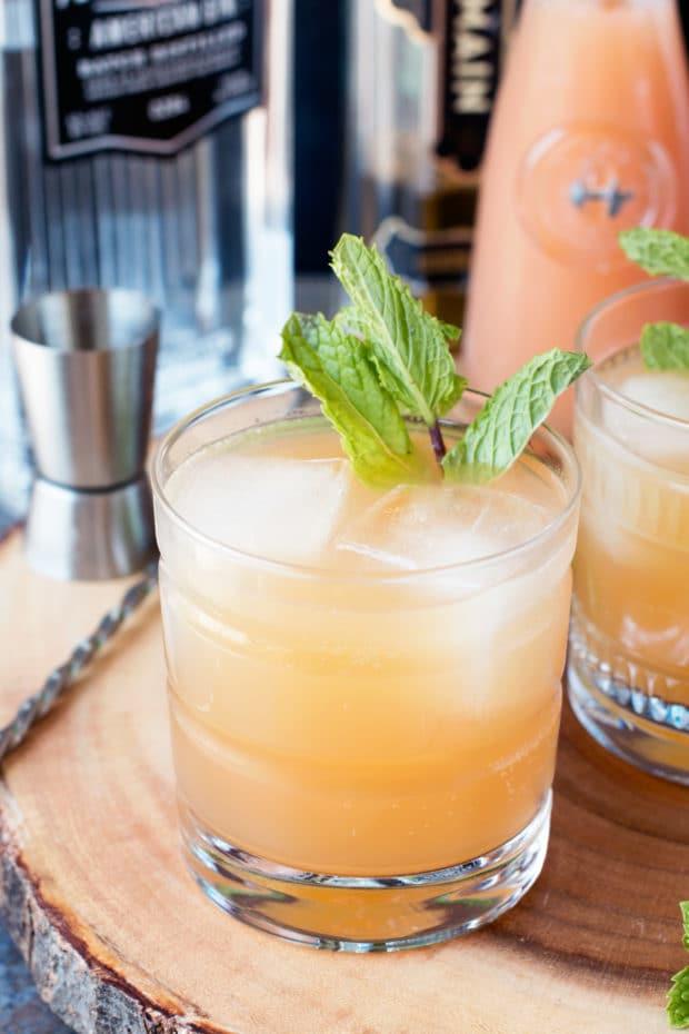 Elvis Cocktail (AKA Grapefruit Gin Beer Cocktail)   cakenknife.com #cocktail #beer #IPA #gin