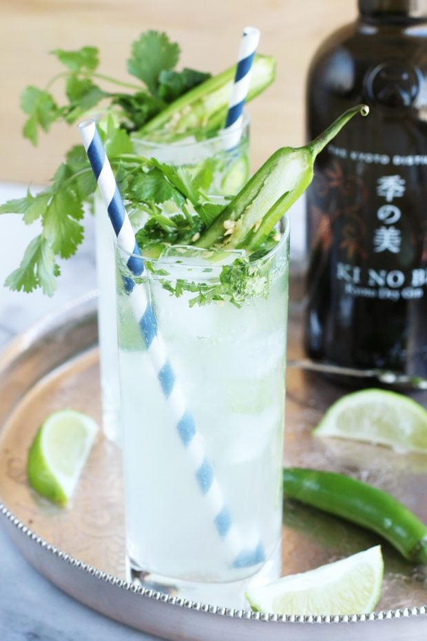 Serrano Cilantro Gin and Tonic
