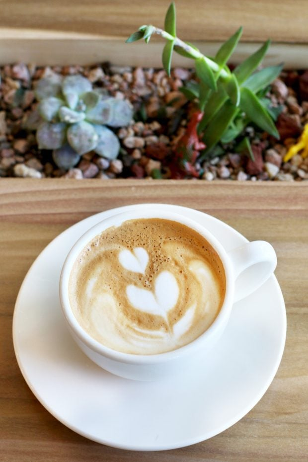 Pablo's Coffee on East Colfax coffee with succulents