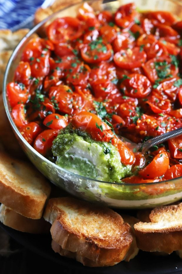Avocado Ricotta Tomato Pesto Layer Dip