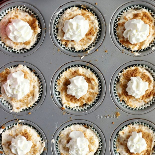 Mini No-Bake Gingerbread Cheesecakes