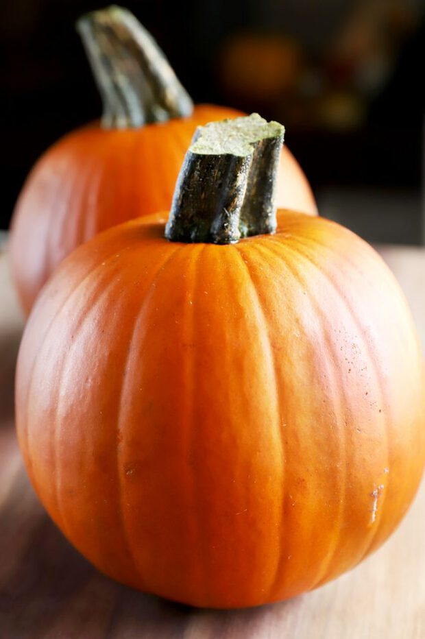 Photo of two pie pumpkins