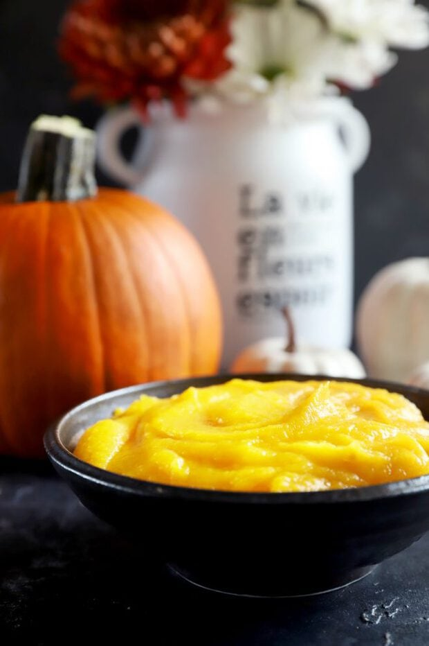 Side view of pumpkin puree in a bowl