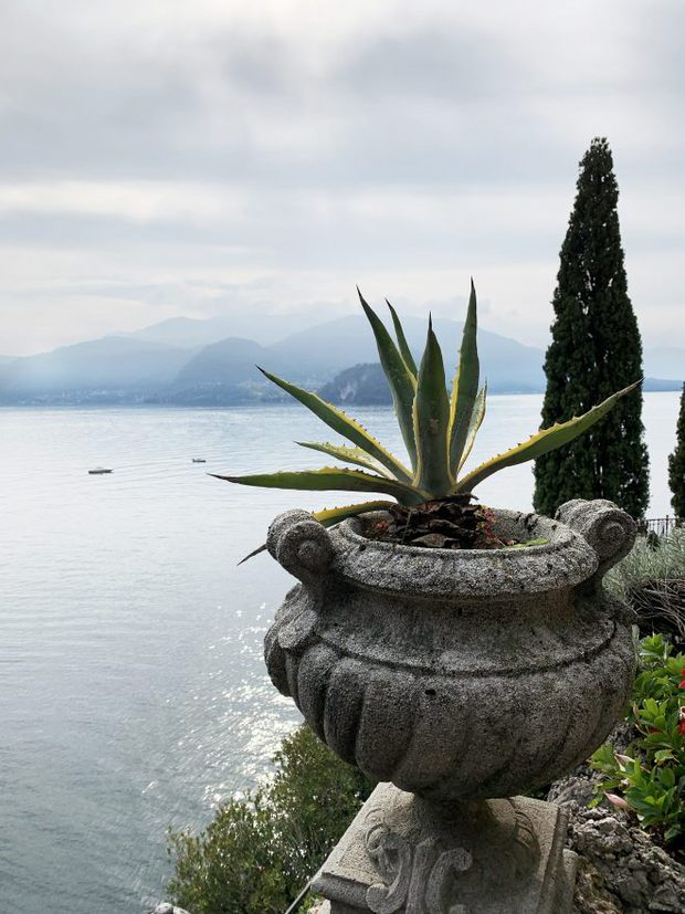 Overlooking Lake Como from Varenna Gardens