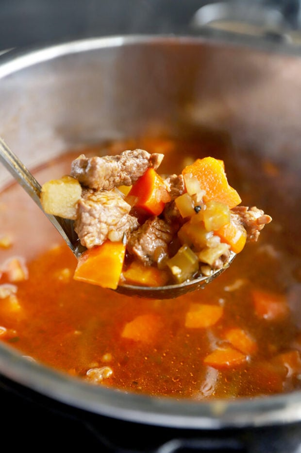 Instant Pot stew in ladle photo