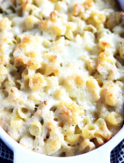 Jalapeño Chicken Havarti Mac and Cheese in baking dish photo