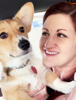 Mochi puppy update image