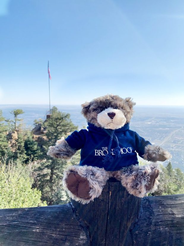 The Broadmoor bear at Cloud Camp image