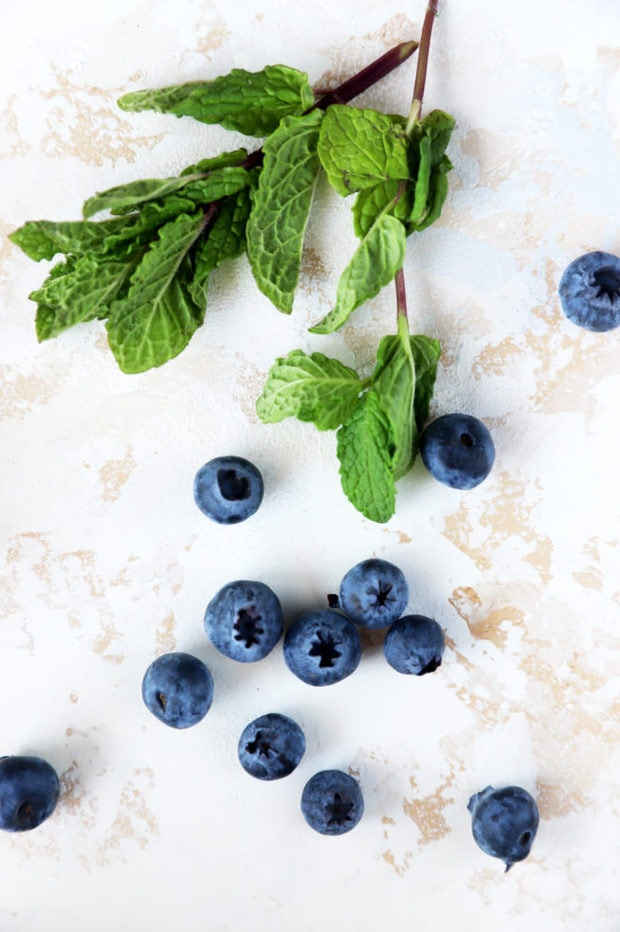 Blueberries and mint image